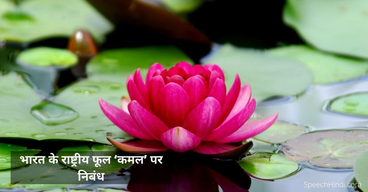 भारत के राष्ट्रीय फूल 'कमल' पर निबंध | Essay on Lotus Flower in Hindi